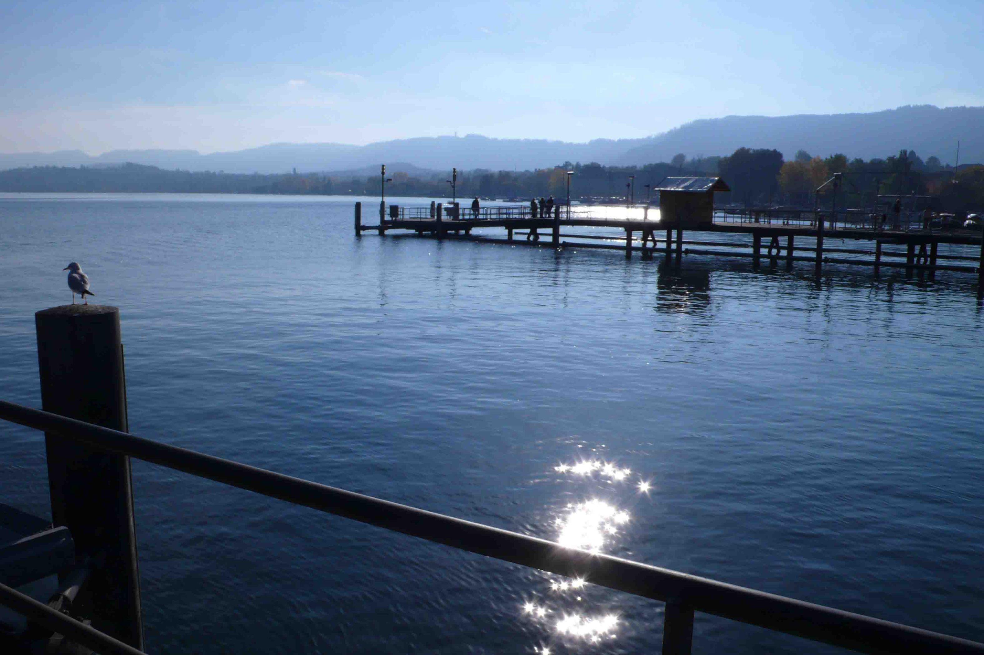 Zurich'slake